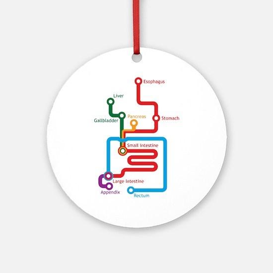 Gastrointestinal Subway Map Ornament (Round)