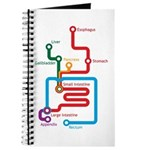 Gastrointestinal Subway Map Journal