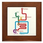 Gastrointestinal Subway Map Framed Tile