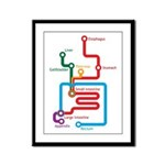 Gastrointestinal Subway Map Framed Panel Print