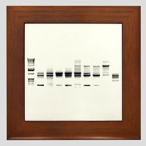 DNA Gel B/W Framed Tile