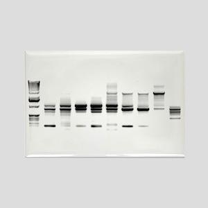 DNA Gel B/W Rectangle Magnet