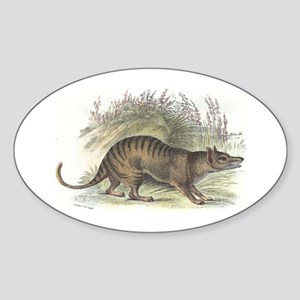 Thylacine Wolf Oval Sticker