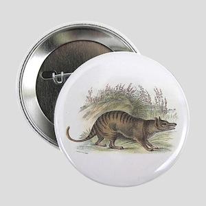 """Thylacine Wolf 2.25"""" Button"""