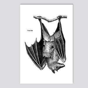 Fruit Bat Postcards (Package of 8)