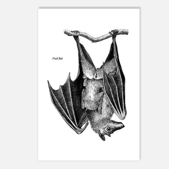 Fruit Bat Postcards (Package of 8)