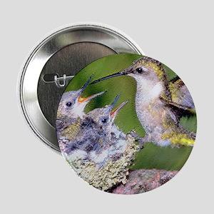 "Baby Hummingbirds 2.25"" Button"