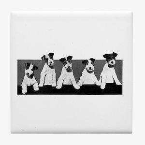 Jack Russell Terriers Tile Coaster