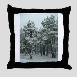 Winter Storm in Sedona, AZ Throw Pillow