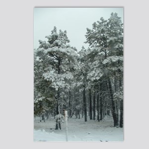 Winter Storm in Sedona, AZ Postcards (Package of 8