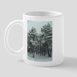 Winter Storm in Sedona, AZ Mug