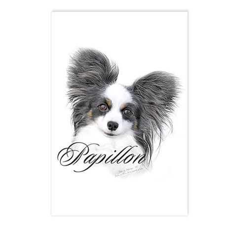 Papillon Headstudy2 Postcards (Package of 8)
