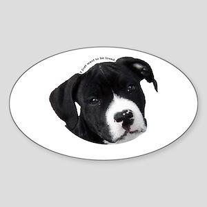 American Staffordshire Terrier Puppy Sticker (Oval