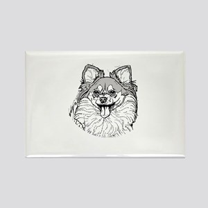 Pomeranian Rectangle Magnet