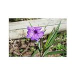 Little Purple Flower Rectangle Magnet