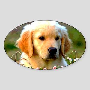 Austin The Retriever Puppy Sticker