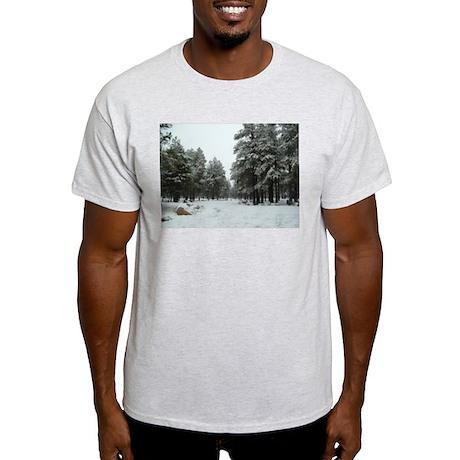 Winter in Arizona Light T-Shirt