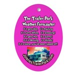 Trailer Park Weather Forecaster