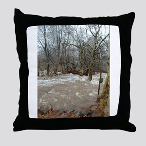 Flooding after the storm Throw Pillow