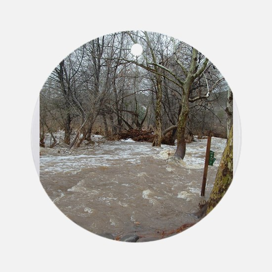 Flooding after the storm Ornament (Round)