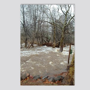 Flooding after the storm Postcards (Package of 8)