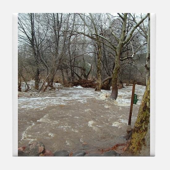 Flooding after the storm Tile Coaster
