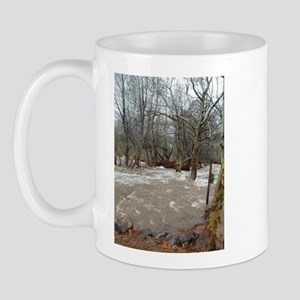 Flooding after the storm Mug