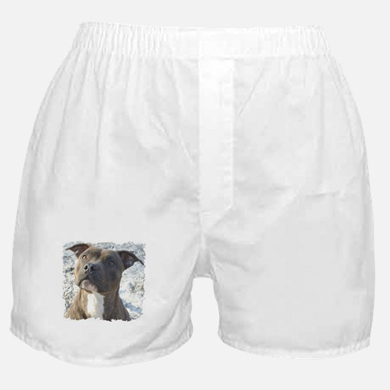 Brains, Beauty & Brawn That's Boxer Shorts