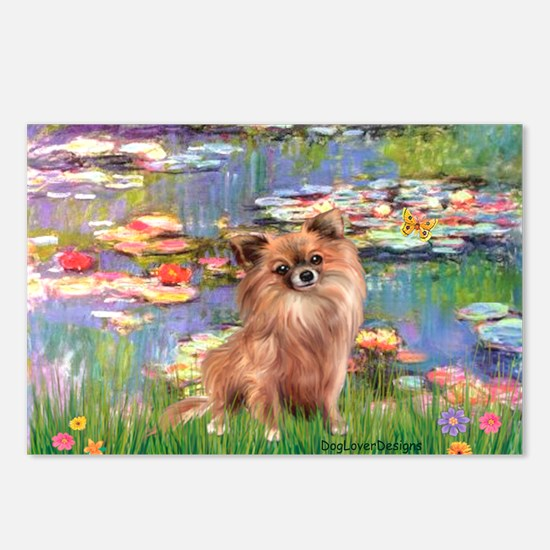 Lilies / Chihuahua (lh) Postcards (Package of 8)