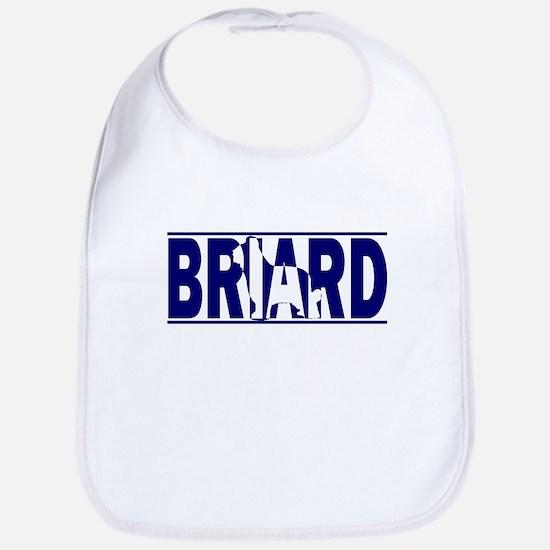 Hidden Briard Bib
