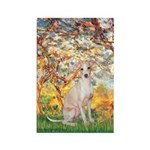 Spring / Italian Greyhound Rectangle Magnet