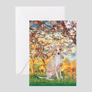 Spring / Italian Greyhound Greeting Card