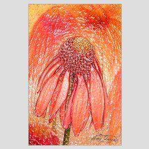 Echinacea Large Poster
