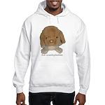 Unadoptables 3 Hooded Sweatshirt
