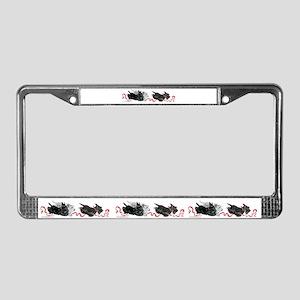 License Plates License Plate Frame