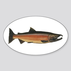 Coho Salmon Oval Sticker