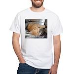Make it Stop 1 White T-Shirt