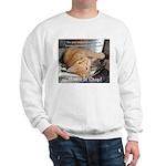 Make it Stop 1 Sweatshirt