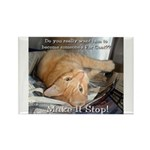Make it Stop 1 Rectangle Magnet (100 pack)