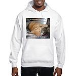 Make it Stop 1 Hooded Sweatshirt