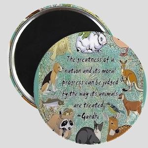 Animals Magnets