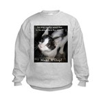 Make It Stop 4 Kids Sweatshirt