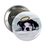 BOSTON TERRIER ANGEL LOOK Button