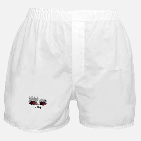Sewing Pincushion - Hi Sexy Boxer Shorts