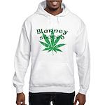 Blarney Stoned Hooded Sweatshirt