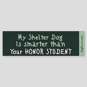 Shelter Dog Bumper Sticker (teal)