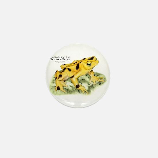 Panamanian Golden Frog Mini Button