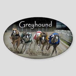 Greyhounds Oval Sticker