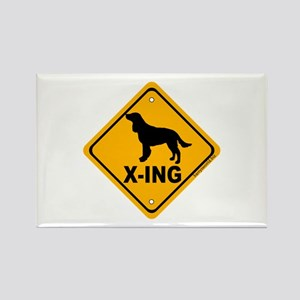 AWS X-ing Rectangle Magnet (10 pack)