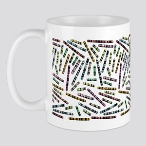 Chromosome Cup